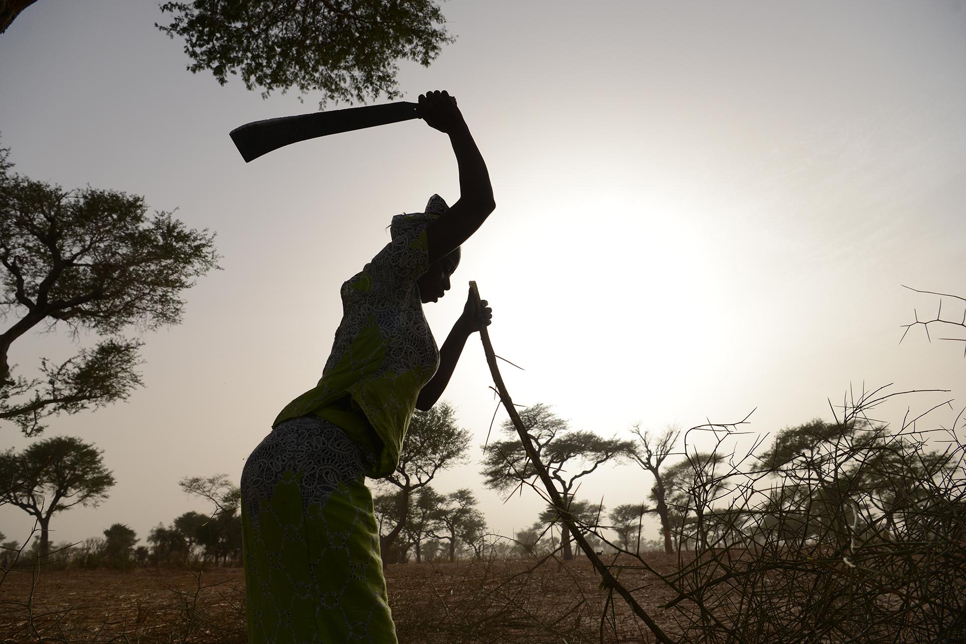SENEGAL: DA DAKAR AL SAHEL